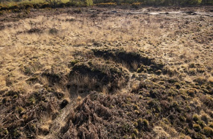 First World War Practice Trenches, Browndown Ranges (North)